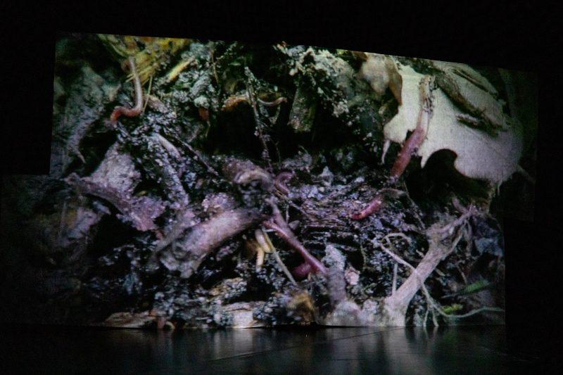 Jurij Konjar: BO – Biološki Odpadki  Španski borci, april 2021